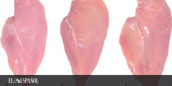 Por qué tienes que evitar el pollo del súper que tenga rayas blancas …