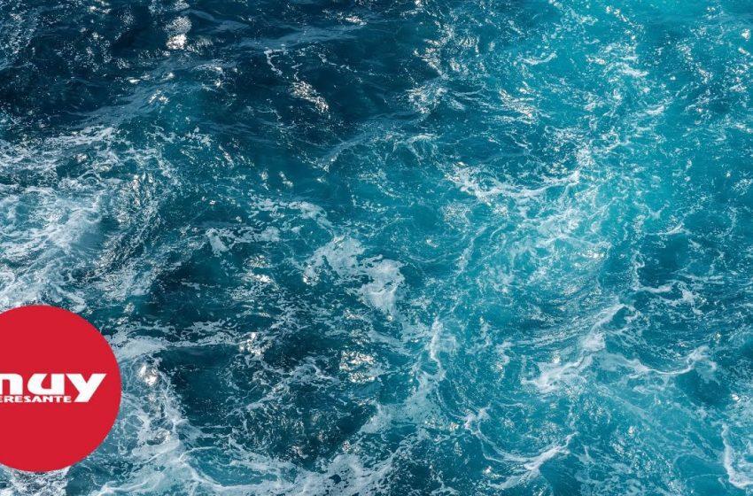 Nuevo récord de temperatura en los océanos