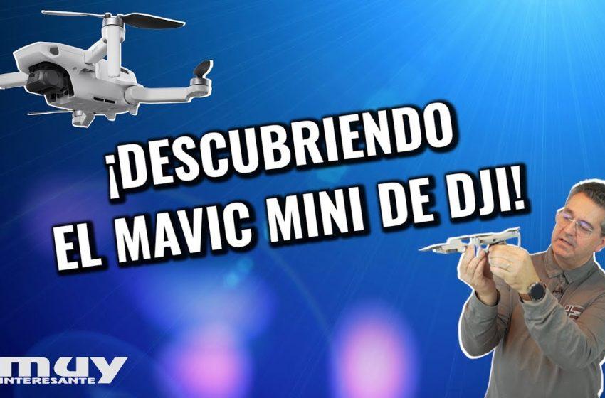 Analizamos el Mavic Mini de DJI  | El dron más manejable del mercado