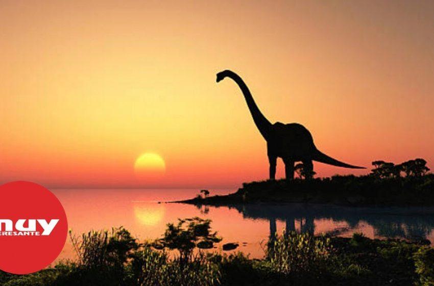 La Tierra estaba al otro lado de la galaxia cuando surgieron los dinosaurios