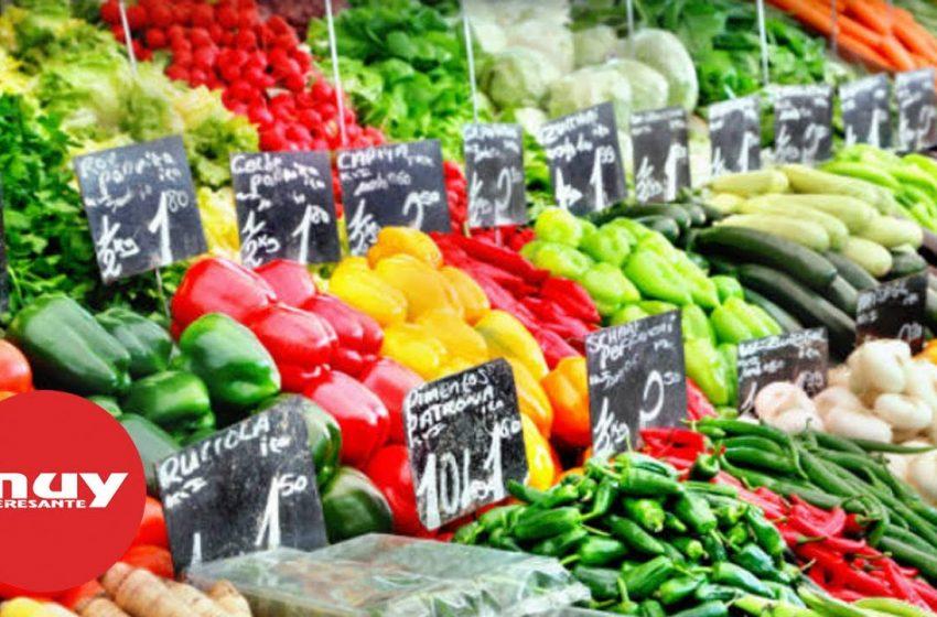 ¿Qué son los alimentos trasgénicos?