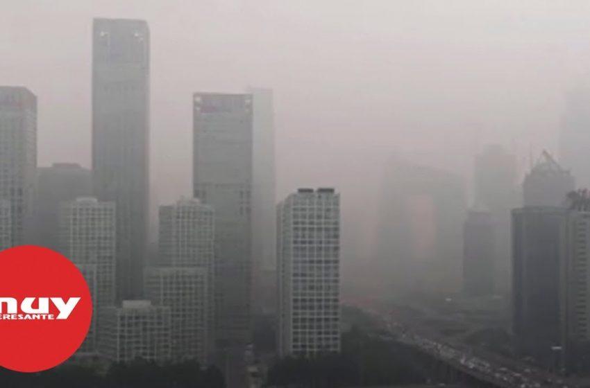 La contaminación del aire, el mayor riesgo ambiental para la salud