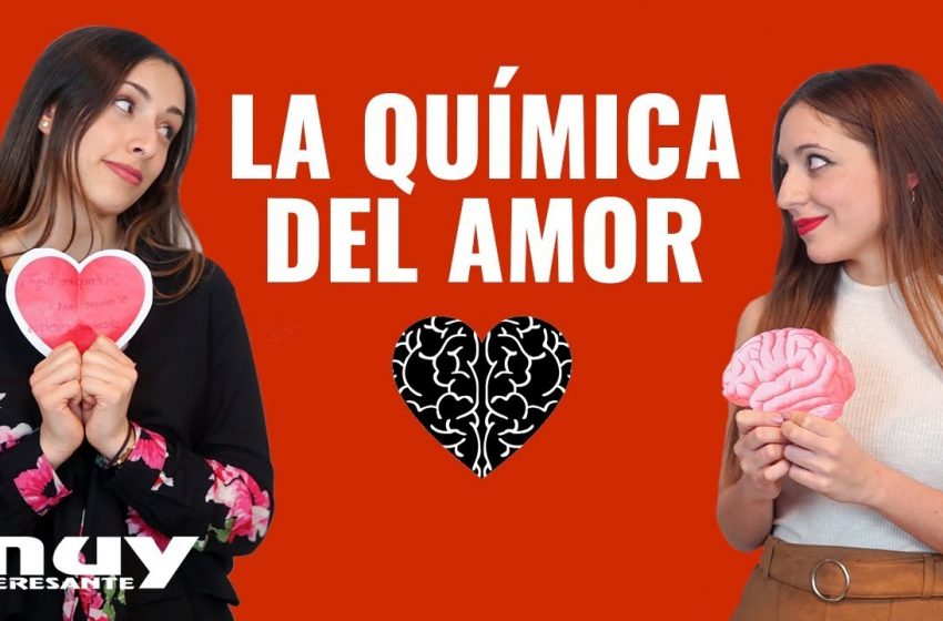 San Valentín y la BIOQUÍMICA DEL AMOR ft. El rincón de Stendhal · Ciencia con Lau