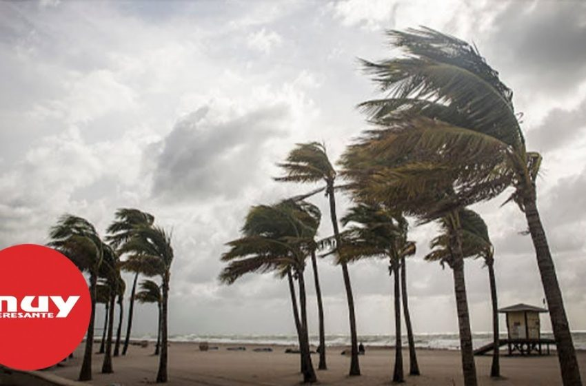 Nombres de huracanes, cómo desde cuándo y por qué se usan