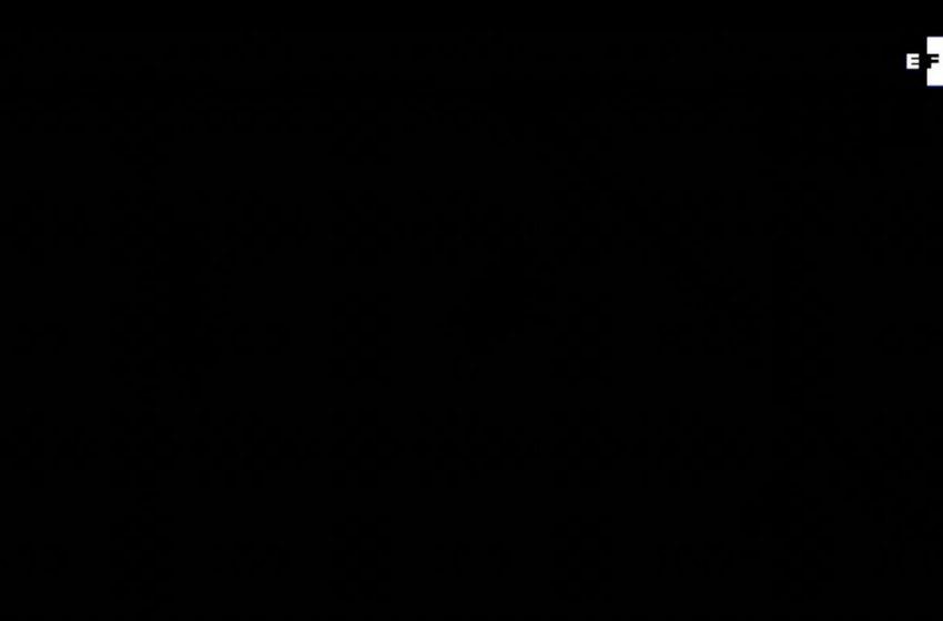 #EFETV   Te contamos en 60 segundos cómo transcurrió el 21 de julio en América.  Toda la información en Efeservicios:  …